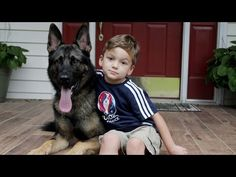 Loyal German Shepherd Helps Family with the Chores Unusual Animal Friendships, Boxer Breed, Nanny Dog, German Shepherd Puppies, German Shepherds, English Mastiff, Doberman Pinscher, Family Dogs, Super Powers