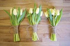 Image result for simple tulip pictures