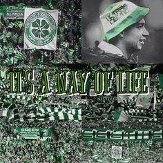 Celtic Images, Celtic Fc, Glasgow, Scotland, Emerald, Fans, Crown, Sport, Places