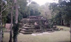 What was the Purpose of the Mysterious Maya E-Group Complexes?: Pyramidal Temple with Platform at Uaxactun E-Group