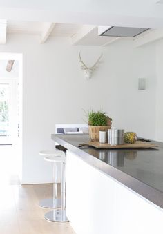 White kitchen and a deer head on the wall | Styling & Text Barbara Natzijl | Photographer Margriet Hoekstra | vtwonen June 2015
