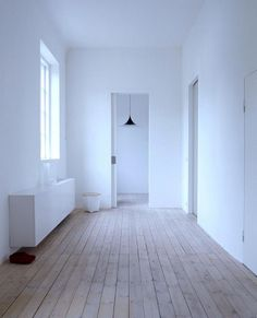 white | blue | interior
