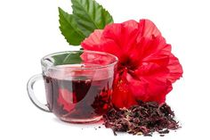 Is Hibiscus Tea Good for Kidney Patients Are you looking for herbal tea for your kidney disease? Do you know what kinds of tea are suitable for you? In this article, let's have a look at whether hibiscus tea is good for kidney patients or not. Hibiscus Leaves, Hibiscus Tea, White Hibiscus, Hibiscus Plant, Blood Pressure Diet, Blood Pressure Remedies, Hibiscus Sabdariffa, Healthy Holistic Living, Mexican Drinks