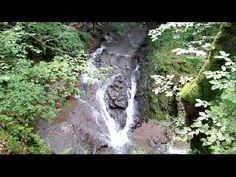 Cascada Cornet