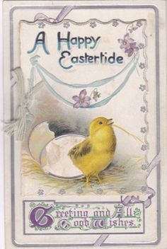 EASTER-E-148579-Newly-hatched-Chick-card-opens-to-message-postcard
