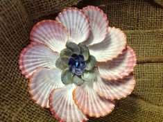 Pinkish Purple Seashell Flower- all Natural Color with Glitter on Etsy, $30.00