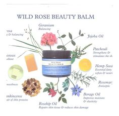 nyr organic wild rose | NYR Organic's award winning Wild Rose Beauty Balm. I LOVE this product feel so blessed to have found NYR Organic ♥
