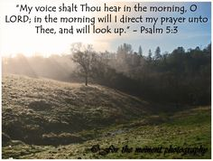 Psalm 5:3    The Message (MSG)       A David Psalm      5 1-3 Listen, God! Please, pay attention!  Can you make sense of these ramblings,  my groans and cries?      King-God, I need your help.  Every morning      you'll hear me at it again.  Every morning      I lay out the pieces of my life      on your altar      and watch for fire to descend.