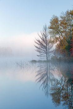 Council Lake In Fog, Michigan's Upper Peninsula