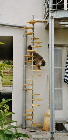 Katzenwendeltreppe cat spiral stairs. #cats #CatLadder #CatStairs