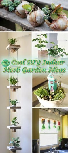 25 Cool DIY Indoor Herb Garden Ideas • Lots of Projects & Tutorials on How to Create Your Own Indoor Herb Garden!