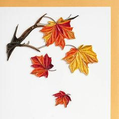 Quilling galore!  A beautiful card bursting with fall colors and extensive fine quilling.  Imagine the delight on your loved one's face as they receive this exq