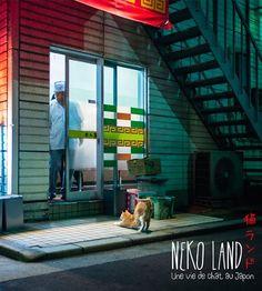 Amazon.fr - Nekoland, une vie de chat au Japon - Bonnefoy Alexandre, Vaufrey Delphine - Livres