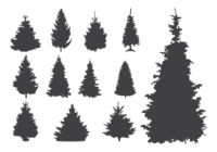 Sapin Silhouettes Vector