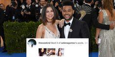 The Weeknd Just Stalked Selena Gomez's Instagram Account  http://www.elle.com/culture/celebrities/news/a46402/the-weeknd-selena-gomez-instagram-account/