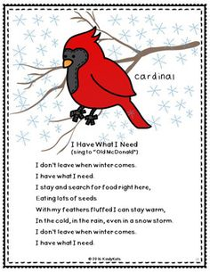 What do animals do in winter? They adapt, hibernate, or migrate! These original piggyback songs and rhymes will help your crew understand what happens to animals in winter. Kindergarten Songs, Preschool Music, Preschool Lesson Plans, Preschool Themes, Winter Crafts For Kids, Winter Fun, Winter Theme, Preschool Winter, Songs For Toddlers