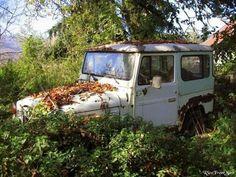 Toyota Land Cruiser FJ40 #abandoned