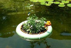 Floating Island for pond tutorial | Water Gardens | A Gardener's Forum