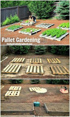 Potager Palettes, Palette Garden, Potager Bio, Vegetable Garden Design, Vegetable Gardening, Vegetables Garden, Veggie Gardens, Garden Types, Diy Garden Projects