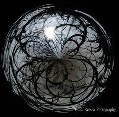 Mysterious 5x5 Fine Art Photography Digital Art by CindiRessler, $14.50