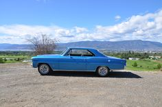 My car. 1966 Acadian canso SD 327cid 4 speed