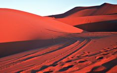 The Sahara Desert (Morocco) is truly magnificent.