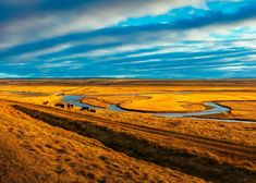 #beautiful #clouds #countryside #dawn #desert #dusk #evening #hay field #hdr #herd #horses #lake #landscape #nature #outdoors #pasture #remote #rural #scenic #stream #summer #sunset #travel #water