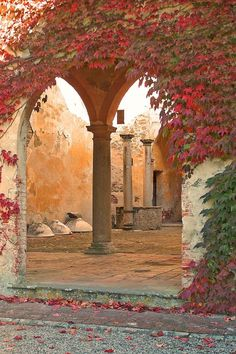Autumn at the Villa... Italy
