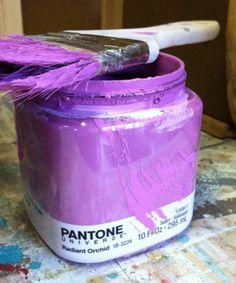 Pantone Paint Punch Fuschia