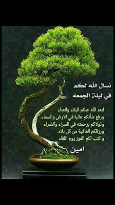 Morning Wish, Herbs, Jumma Mubarak, Plants, Friday, Quotes, Quotations, Herb, Plant