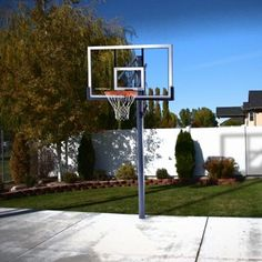 I have a basketball net in my driveway and I like to have my son come out with me to play basketball and hockey.