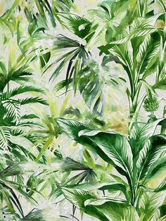 64 Best Tropical Jungle Foliage Images In 2019 Tropical