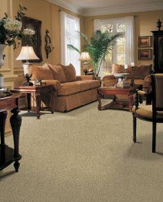 Living Room Carpetneutral Carpet Traditional Living Room Impressive Carpet For Living Room Design Ideas