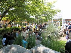 Graduation party in McVay Courtyard