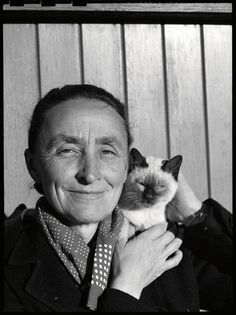 Pablo Picasso, Andy Warhol, Frida Kahlo. So many great artists have one very furry thing in common: cats. Gathered here for the first time by editor Alison Nastasi are behind-the-scenes stories of mor