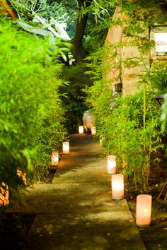 candle lined walkways - I like this style, maybe even better than the mason jars. we probably want this from the BBQ path back to the cabins and from the orchard (wedding reception) to the bar/lodge and cabins.