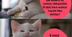 kkkkkkkkkkkk | Brasil - Português | Pinterest