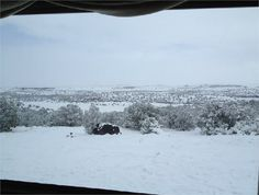 Apache County, Arizona land for sale - 121 acres at LandWatch.com