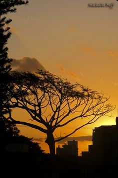Pôr do Sol em Florianópolis