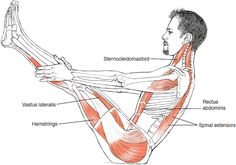 yoga diagram of what muscles are involved with boat pose!Great yoga diagram of what muscles are involved with boat pose! Pilates, Best Cardio Workout, Workout Guide, Workouts, Yoga Positionen, Ashtanga Yoga, Online Yoga Classes, Boat Pose, Muscle Anatomy