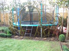 December to March is the time when we can build willow domes. This winter we have managed to get most of our willow locally from in and around Oxford. Some of it came from a well established willow…
