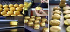 Beyond Umami: Lemon Curd Macarons - Success!