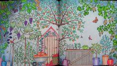 Jardim Secreto colorido - Pesquisa Google