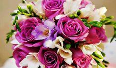 COLOURS  Violet ~ Lavender ~ Amethyst ~ Plum ~ Eggplant
