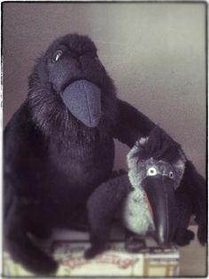 Choose your friends wisely. #ravens #birds #corvus #crows #ravneringene #friendship