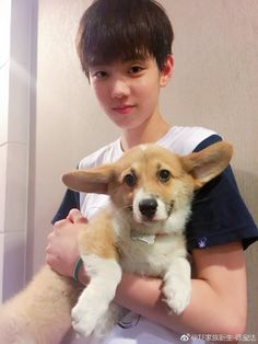 Cute Boys, Ulzzang, Corgi, Korean, Animals, Asian, People, Asian Guys, Girls