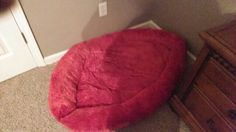 First Dog Bed