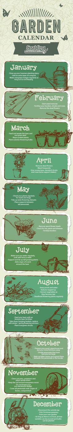 Gardening Calendar - Bakker.com Spalding