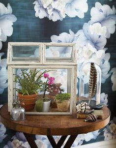 How To: Repurpose Old Picture Frames to Create a Charming Miniature Terrarium - Reliable Remodeler Greenhouse Kitchen, Greenhouse Supplies, Outdoor Greenhouse, Cheap Greenhouse, Backyard Greenhouse, Mini Greenhouse, Greenhouse Plans, Greenhouse Wedding, Portable Greenhouse