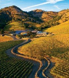 Shafer Vineyards in the Stag's Leap District of Napa Valley